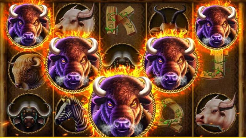 เกมสล็อตควายป่า Buffalo