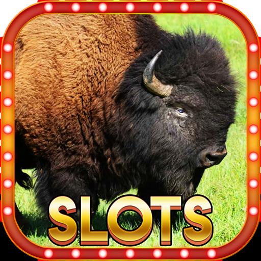 รีวิว เกมสล็อตควายป่า Buffalo เล่นเกมสล็อตออนไลน์ในเว็บคาสิโน